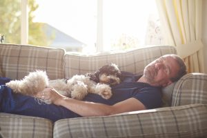 a man sleeps on the couch joined by his little dog.