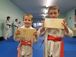Jacob participates in Taekwondo with brother as a supplement to his occupational therapy.