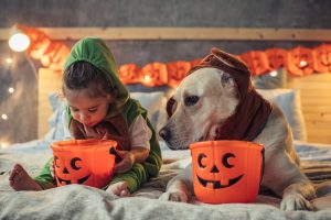 Little boy and his dog in costumes on bed celebrating Halloween.